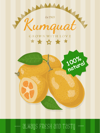 Vector poster with a kumquat Illustration