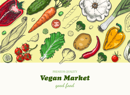 Horizontal background with different vegetables. Organic food. Vector illustration for your design
