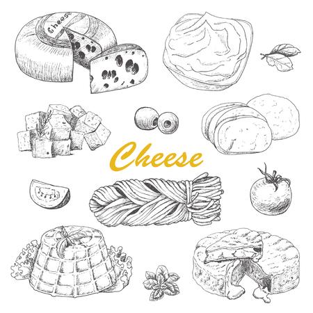 Colección de vectores de diferentes tipos de queso. Ilustración vectorial para su diseño Ilustración de vector