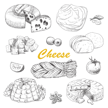 Vector collection of different kinds of cheese. Vector illustration for your design Vettoriali
