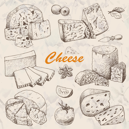 Vector collection of different kinds of cheese. Vector illustration for your design  イラスト・ベクター素材