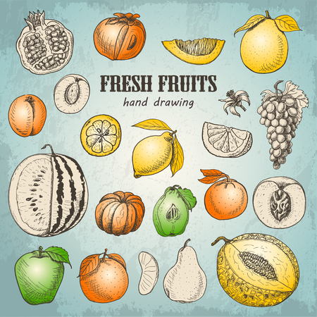 Set of fresh fruits in sketch style. Vector  illustration for your design Stock Illustratie