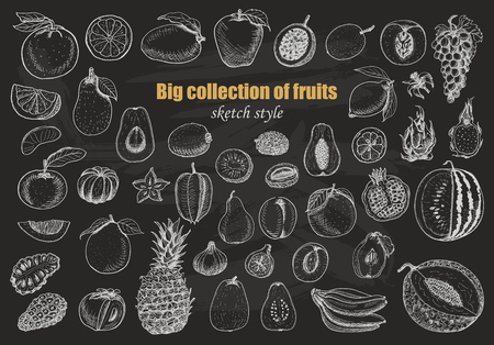Big collection of fruits on dark background. Vector  illustration for your design