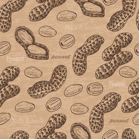 Seamless pattern with peanuts. Vector  illustration for your design