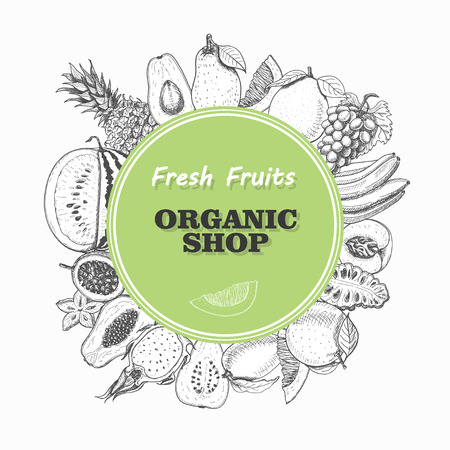 Vector background with isolated fruits in a circle. Vector  illustration for your design