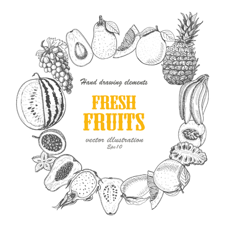 Vector round frame of fruits. Vector  illustration for your design