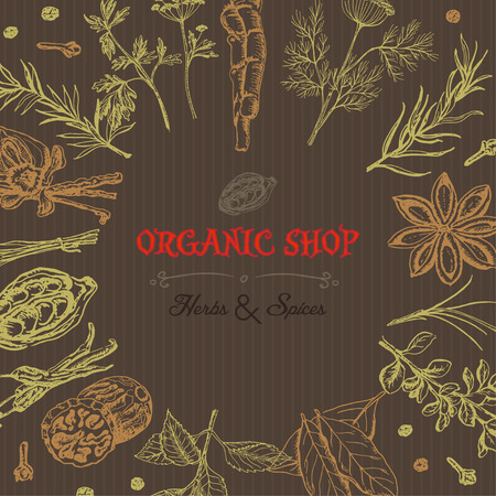 Vector background with isolated spices and an inscription in the middle. Vector  illustration for your design Illustration