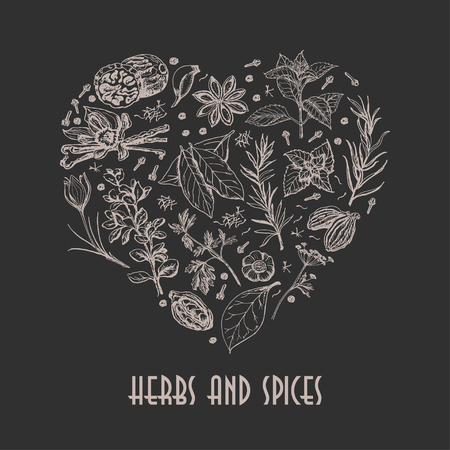 Isolated heart from spices and herbs on black background. Vector  illustration for your design Vettoriali