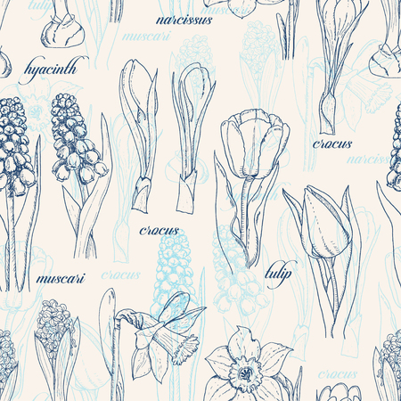 Seamless pattern with spring flowers. Vector  illustration for your design
