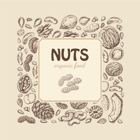 Vector square frame of nuts and seeds. Vector  illustration for your design