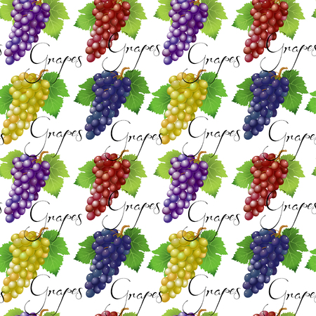 Seamless pattern with grapes. Vector  illustration for your design Banque d'images - 122749394