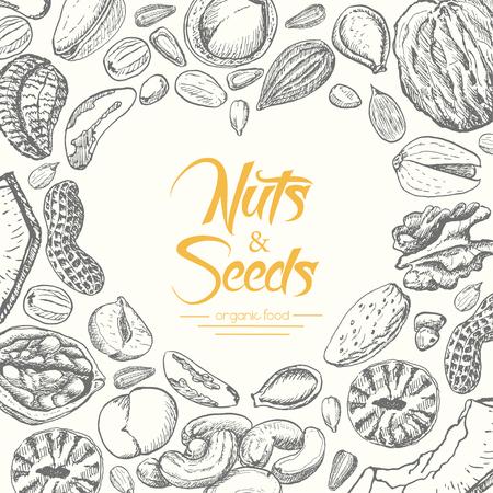 Vektorhintergrund mit Nüssen und Samen. Vektorillustration für Ihr Design Vektorgrafik