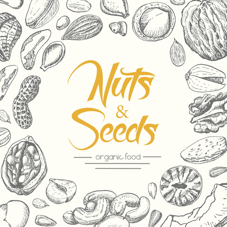 Vector background with nuts and seeds. Vector illustration for your design