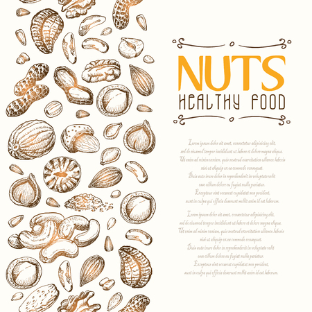 Vector background with nuts arranged vertically. Vector  illustration for your design Illustration