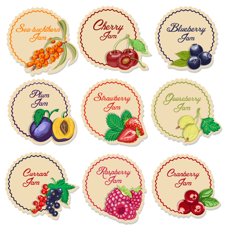 Set of isolated labels for jam from berries. Vector illustration for your design Vetores