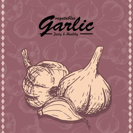 Fresh vegetables sketch background. Vintage hand drawing illustration of a garlic. Vector illustration for your design