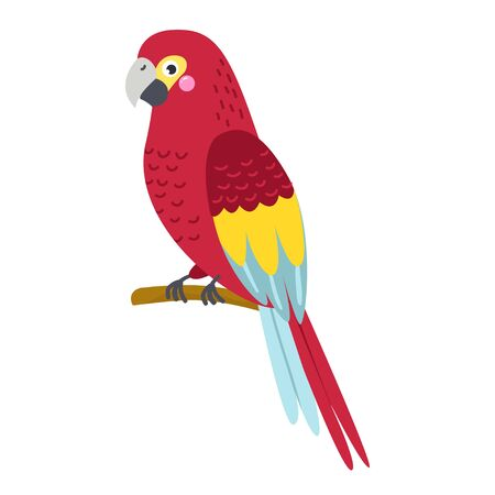 Vector cute African animal. Parrot. Funny character for kids.