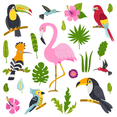 Vector set of cute birds from jungle and plants. Ilustracja
