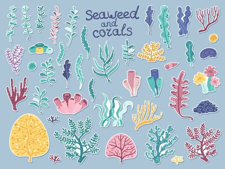 Set of stickers with algae and corals