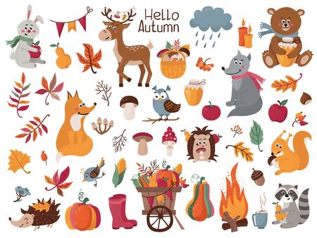 Big set of autumn herbs, leaves and forest animals