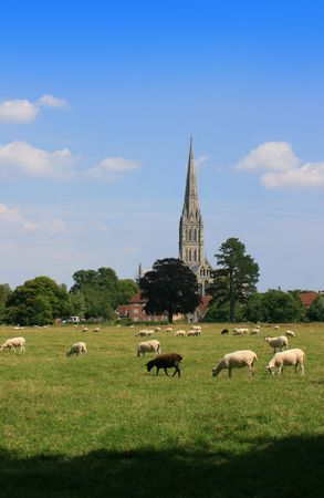 A view of Salisbury Cathedral in Wiltshire, from the meadows, with clear blue sky and green fields to foreground. A view often painted by Constable. Portrait format.   photo