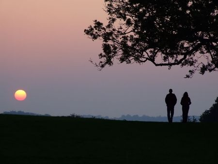 wiltshire:  A couple silhouette against a sunset under trees. Location Old Sarum, Salisbury Wiltshire UK.