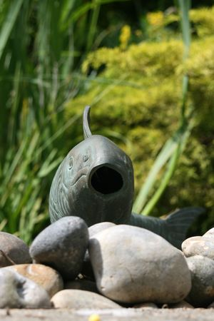 ornamental fish: Un giapponese in stile ornamentale laghetto con pesci ornamentali con la bocca aperta. Ciottoli alle conoscenze acquisite, stagno canne a fondo.