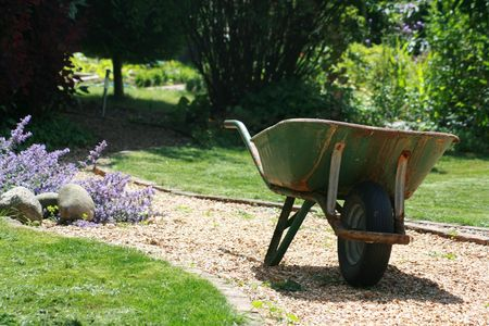 A garden wheelbarrow on a gravel path with garss lawns to either side, trees and foliage to background. A country garden scene. Stock Photo