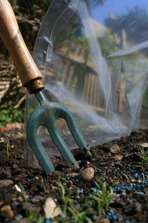 hand held: Una mano tesa giardino forchetta nel terreno accanto a un pollytunnel di plastica situato in un piccolo giardino urbano. Primi germogli di una fila di carote da agricoltura biologica visibili al primo piano.