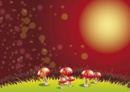 An illustration of a group of red toadstools set on a grassy ridge set against a nightime background. Space for copy available. Stock Illustration - 6116402