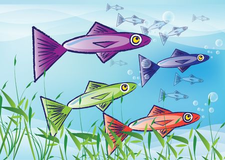 sardines: An illustration of stylized fish. Three colourful fish to the foreground with a shoal, or school, of smaller fish to the background over a blue background with grass reeds to the front.