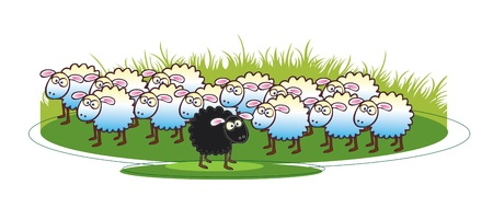 A cartoon illustration of a flock of white coated sheep with a single black sheep to the foreground. All set on a green grass base. Stock Photo