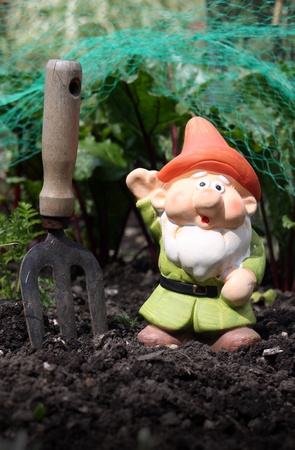A small colorfully decorated bearded garden gnome with an orange hat and green tunic, set in a vegetable patch with a small hand held garden fork set in the earth next to the gnome. Set on a portrait format. photo