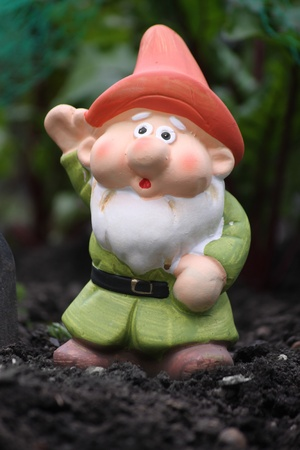 A small colorfully decorated bearded garden gnome with an orange hat and green tunic, set in a vegetable patch. Set on a portrait format. photo