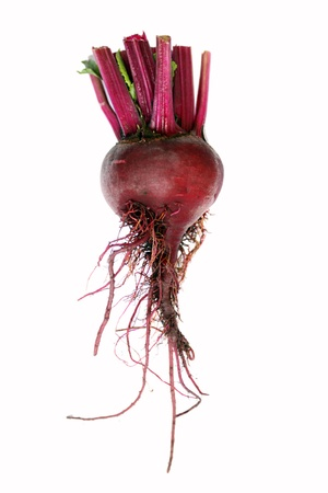 A single red organic beetroot vegetable set on an isolated white background on a portrait format. Stock Photo