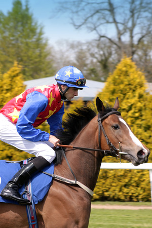 A jockey riding a brown horse at Salisbury Racecouse, Wiltshire  Jockey is wearing a red,blue and yellow riding outfit