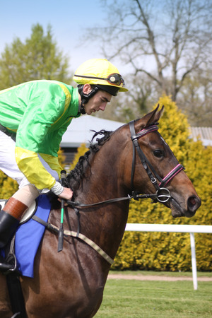 A jockey riding a brown horse at Salisbury Racecouse, Wiltshire  Jockey is wearing a bright green and yellow riding outfit