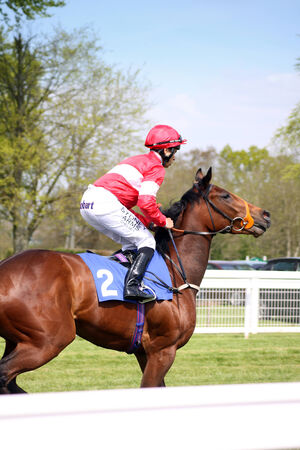 A jockey riding a brown horse at Salisbury Racecouse, Wiltshire  Jockey is wearing a red and white striped riding outfit