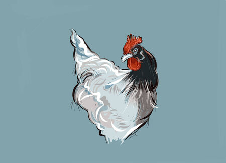 A hand drawn vector illustration of a french hen.