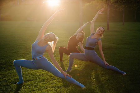 a group of adult women attending yoga outside in the park Stok Fotoğraf