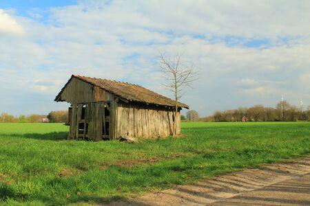 dilapidated: dilapidated schoppen on green meadow