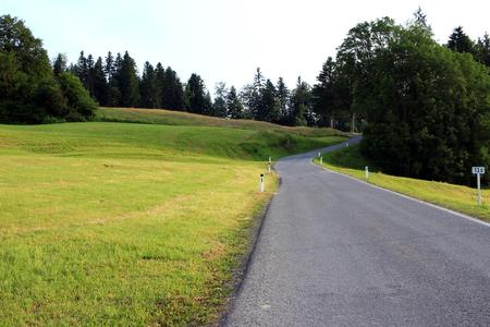 mountain meadow: Road on a mountain meadow