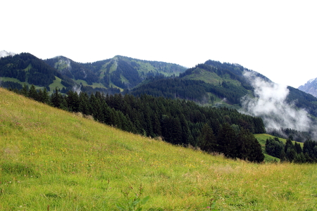 marguerite: Cloud in the mountain wall