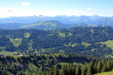 marguerite: Mountains to the horizon
