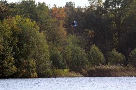 Moewe flies over the lake Stock Photo