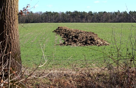 Manure pile in the countryside