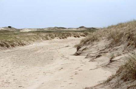 Dünenland