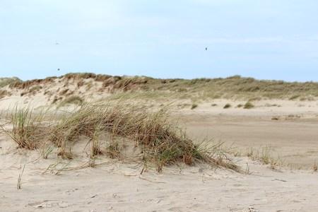 Land behind the dunes Reklamní fotografie