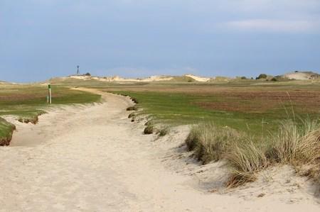 Landscape behind the dunes