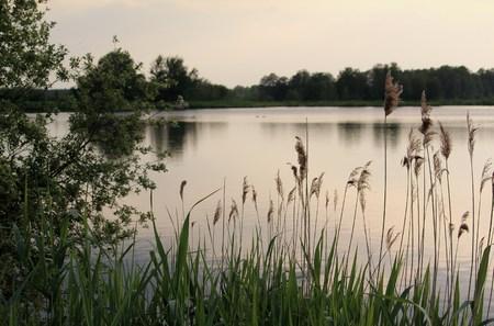 the dusk at the lake Reklamní fotografie